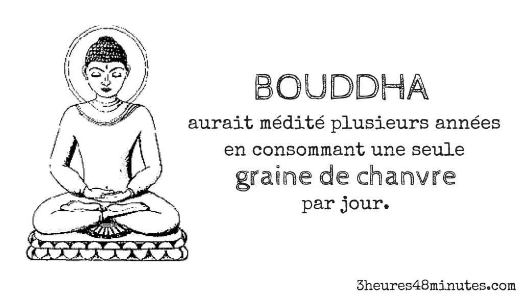 BOUDDHA (4)